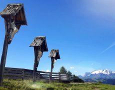 dolomiten-mountainbike-camp-mtb-bike-tour-reise-trailholidays4