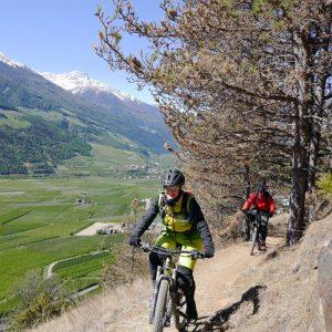 Fahrtechnik Camp Vinschgau- Die Besten Mountainbike Trails und Touren rund um Latsch- MTB Urlaub Tipp für Südtriol - Trailholidays Mountainbikereisen