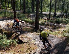 mountainbike-jugendfreizeit-ferien-camp-wales-england-trailholidays-mtb-reisen-bikepark-2